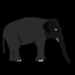 Elephant Alphabets