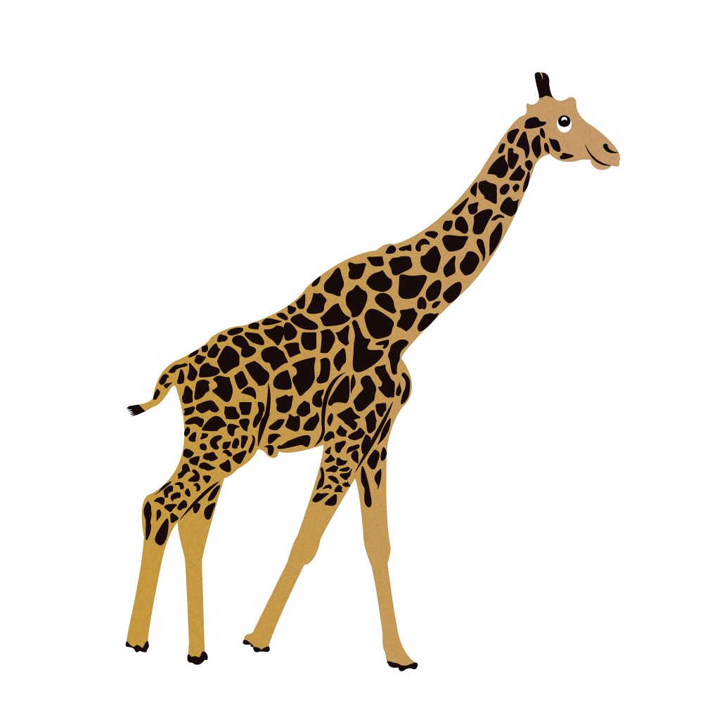 Giraffe Alphabets