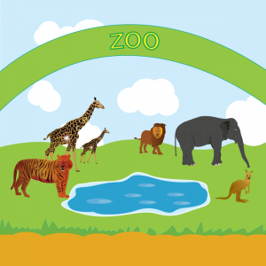 Zoo Alphabets